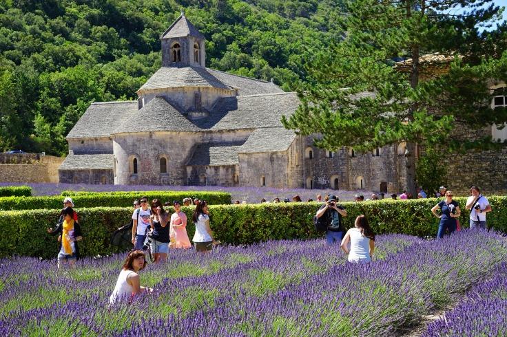 abbaye-de-senanque-1595633_1920